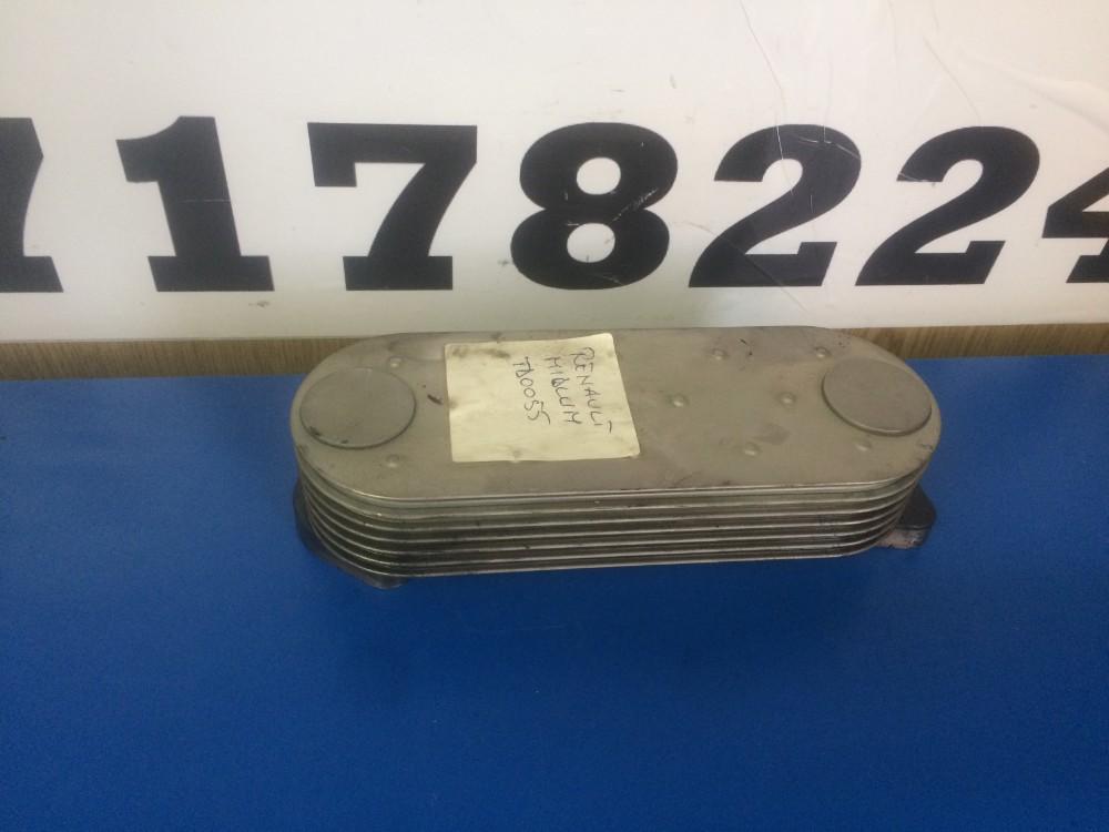 Termoflot Renault Midlum 220 CDI